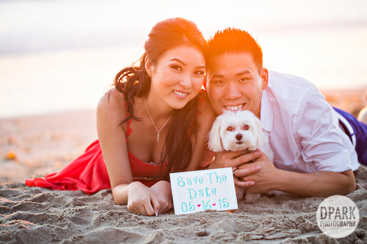 dog engagement save the date ideas