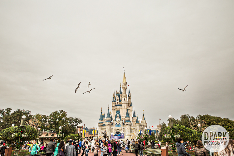 walt-disney-world-best-tour