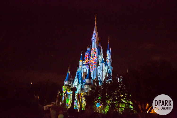 walt-disney-world-front-of-line-fireworks-reserved