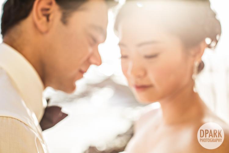 jacqueline-vera-wang-wedding-bridal-gown
