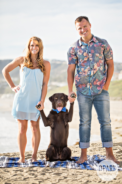dog-engagement-family-photo-ideas