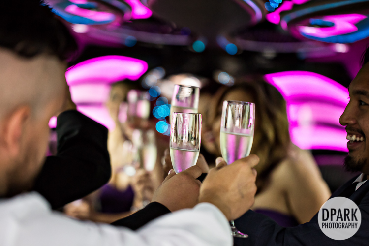 limo-bridal-party-photos