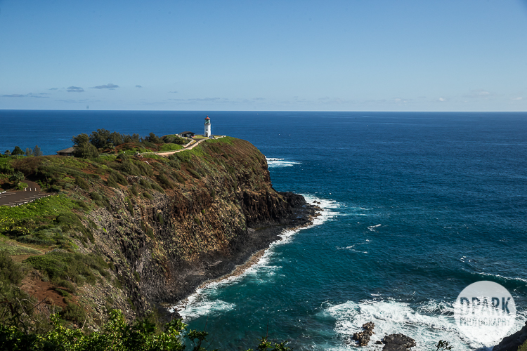 kilauea-lighthouse-wedding