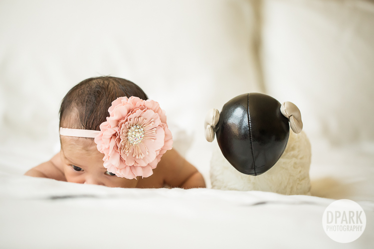 baby-girl-photo-ideas
