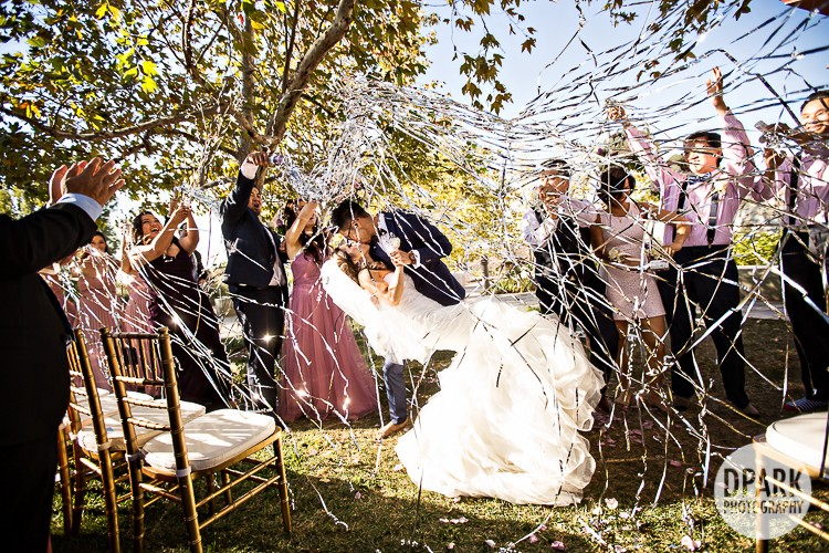 oval-ceremony-wedding-photographer-streamers