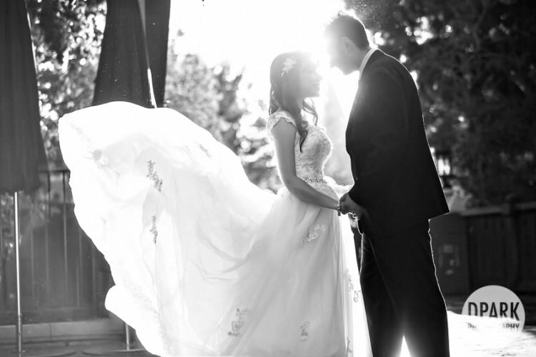 cinderella-princess-magical-wedding