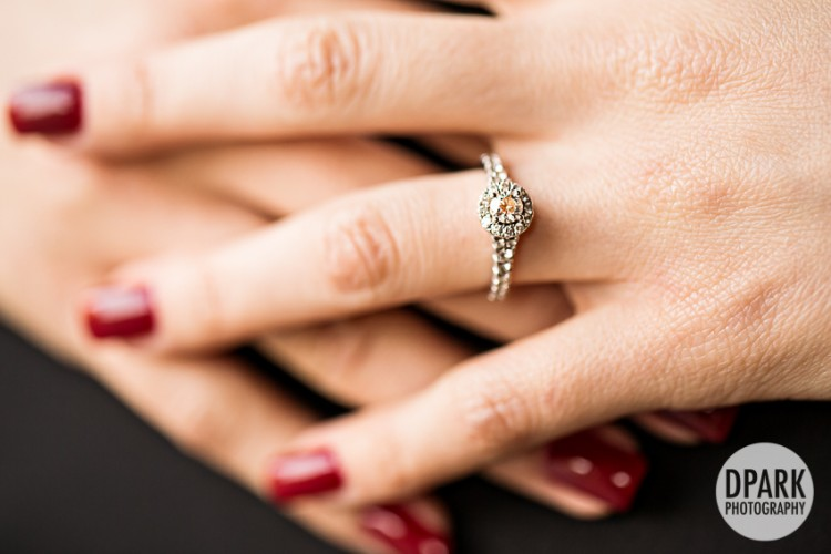 princess-engagement
