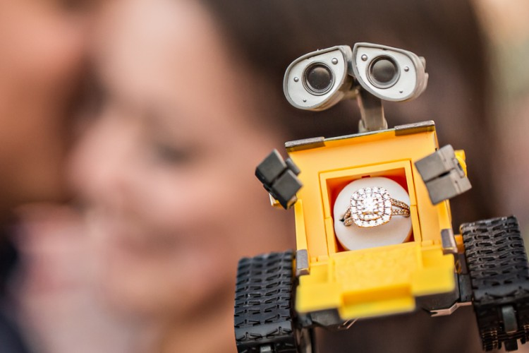 wall-e-inspired-engagement-pictures