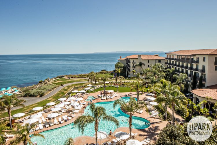 Luxury Terranea Resort Wedding Photography