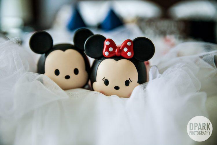 disney-wedding-photographer-mickey-minnie-details