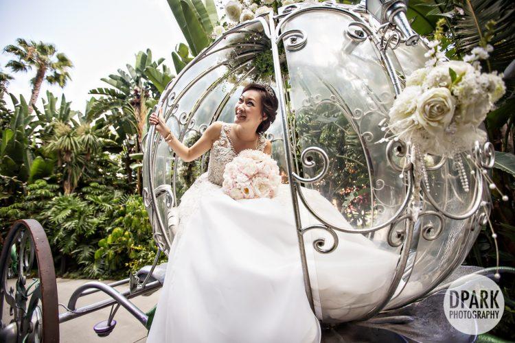 cinderella-wedding-pictures