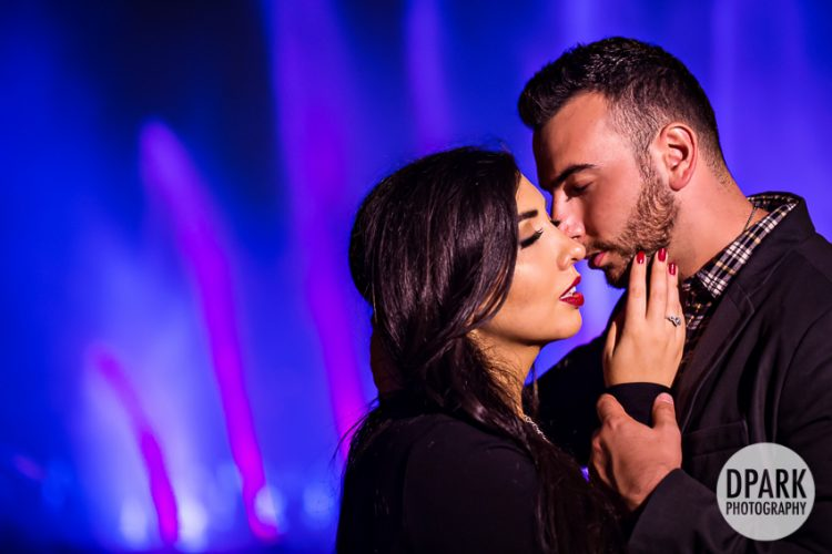 Happily Ever After Engagement | Audrey + Vahe