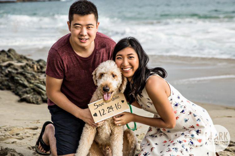 dog-save-the-date-engagement-wedding-photo-ideas