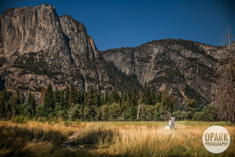 yosemite-wedding-video