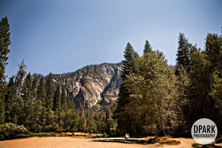 destination-yosemite-national-park-wedding