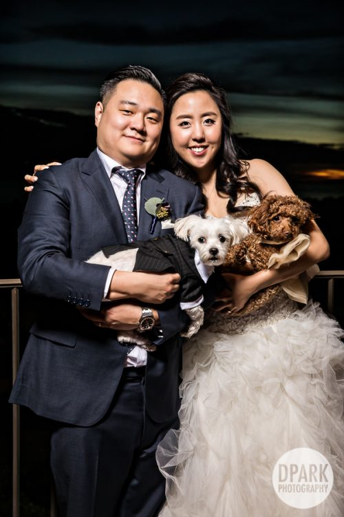mar-vista-ballroom-wedding-reception-pelican-hill-cinema