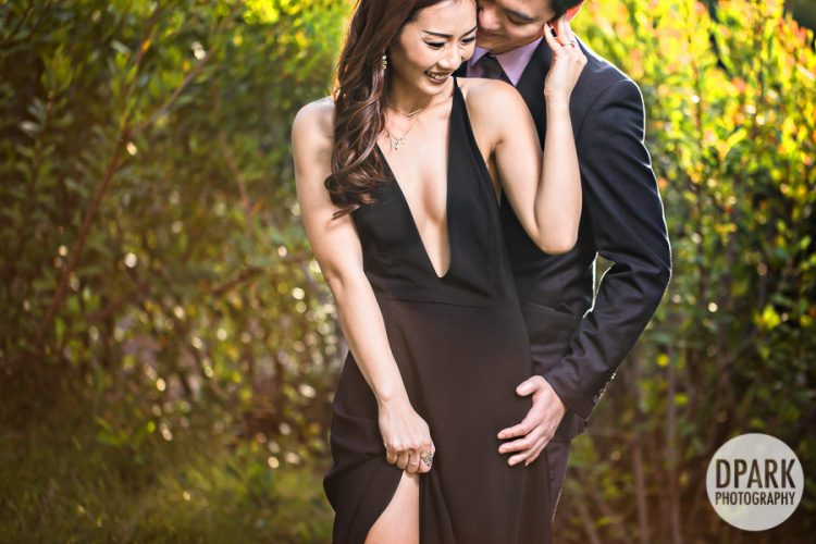 japanese-vietnamese-chinese-korean-engagement-photographer