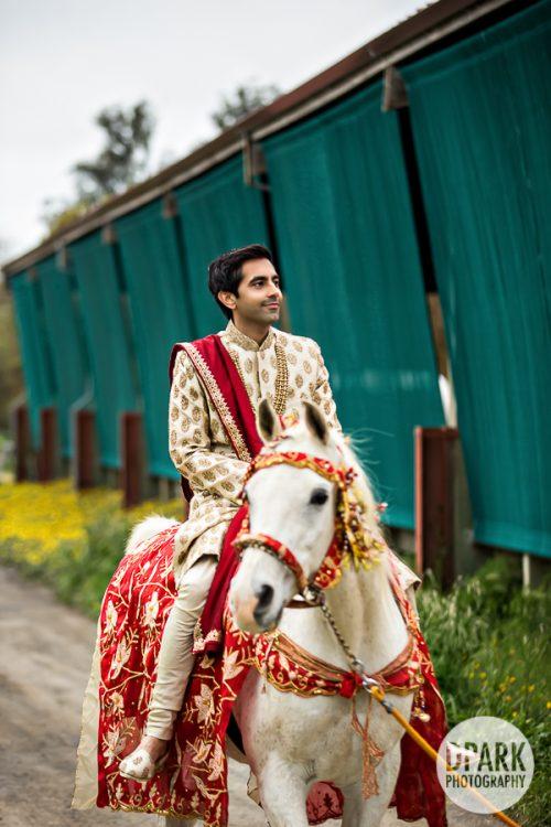 petaluma-indian-wedding-baraat-photographer