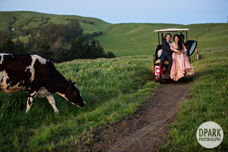 petaluma-wedding-locations
