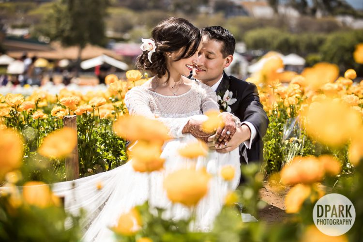 flower-fields-carlsbad-photography-wedding