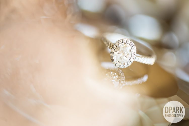 best-princess-inspired-engagement-ring-photo-oval