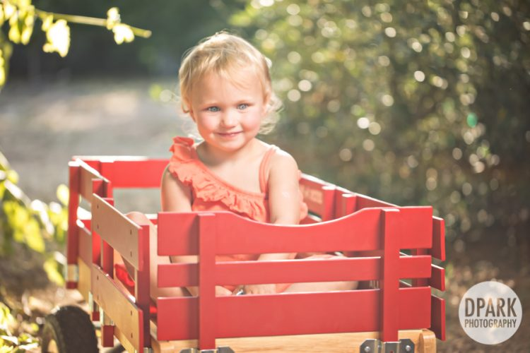 Sneak Peek | Santa Rosa Family Photographs
