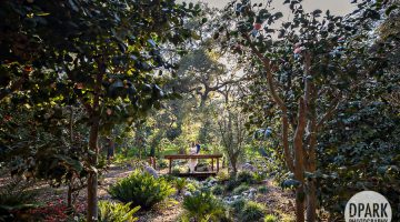 Sneak Peek | Descanso Gardens | Jackie + Justin Engagement