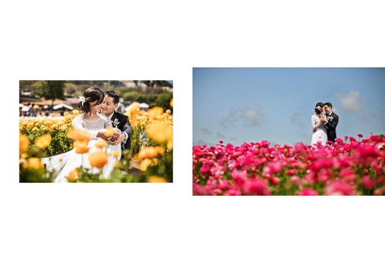 carlsbad-flower-field-wedding-photography