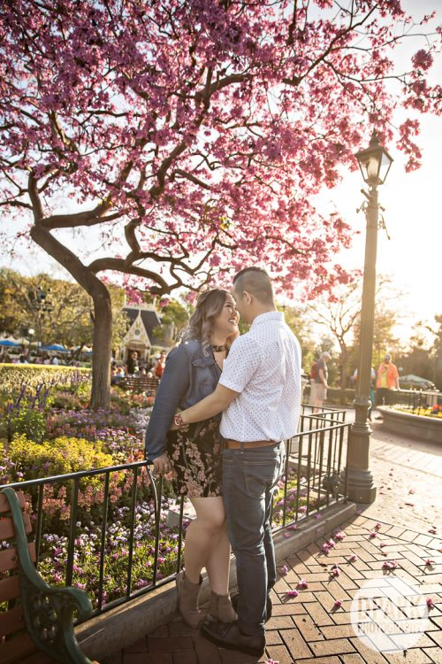 cherry-blossom-anaheim-orange-county-engagement-photographer