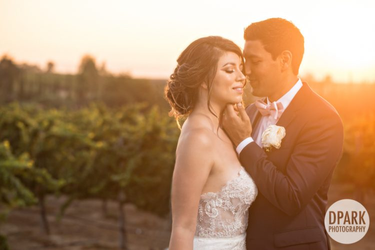 Sneak Peek | Mount Palomar Winery Wedding | Danielle + Raj