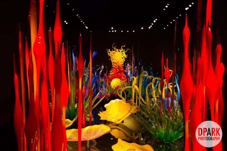 seattle-chihuly-garden-and-glass-engagement-photography