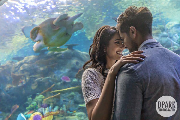 aquarium-of-the-pacific-indian-engagement-photographer