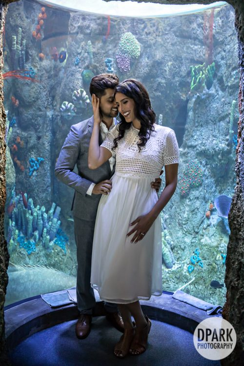 long-beach-aquarium-indian-engagement-photographer
