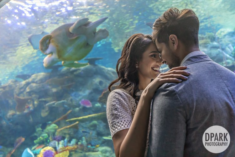 long-beach-aquarium-indian-engagement-photography