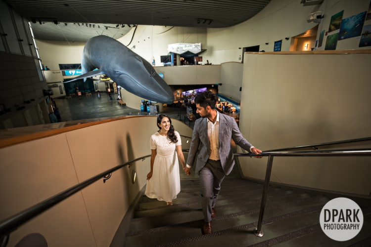 long-beach-aquarium-indian-engagement-photos
