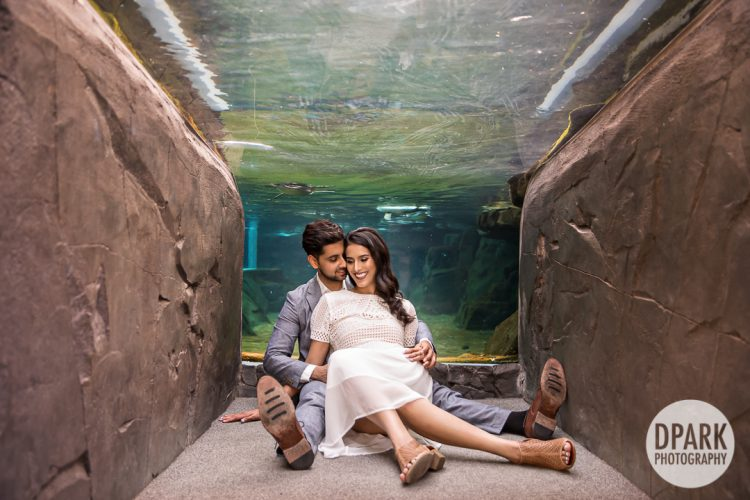 long-beach-aquarium-indian-engagement-photo
