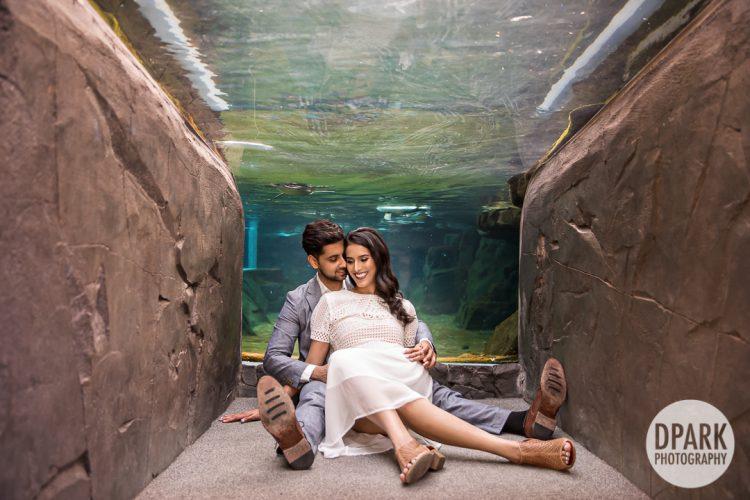 long-beach-aquarium-indian-engagement-photo