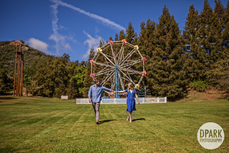 ferris-wheel-engagement-photographer